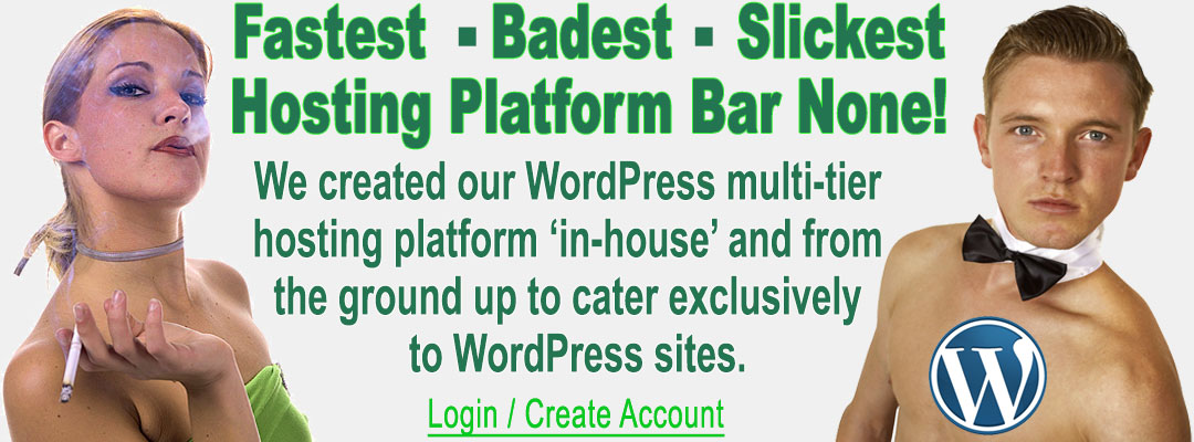 wordpress-header-1